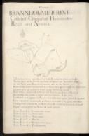 Hawick : Branxholme Toune, Castlehill, Chappelhill, Howmeadow, Reggs and Newmill [1 of 1]