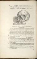 De Duodecim Superioris Maxillae ossibus, in quorum classem nasi ossa etiam referuntur. Caput IX. Fig.I