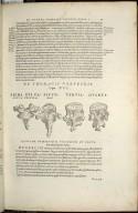 De Thoracis Vertebris. Caput XVI. Fig.I-IIII