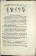De Cubiti ossibus, ulna nimmimirum, et radio. Caput XXIIII. Fig.VII-XI
