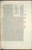 Quoniam in nuda integraq; cavae venae figura seminaliu venarum originem ita atq.