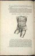 Organis Nutritioni, haec figura primam sectionis serie subsequitur.