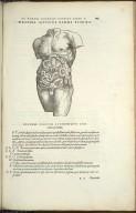 Organis Nutritioni, Decima Quinti Libri Figura.