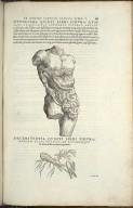 Organis Nutritioni, Duodecima Quinti Libri Figura, Decimatertia Quinti Libri Figura.