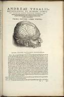 Prima Septimi Libri Figura.