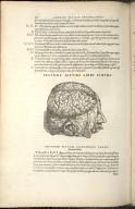 Secunda Septimi Libri Figura.
