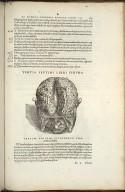 Tertia Septimi Libri Figura