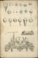 Prima Occulorum Figu: [and] Anatomicorum Instrumentorum delineatio