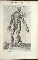Tabula IIII. Libri II.