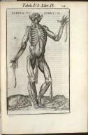 Tabula VI. Libri II.