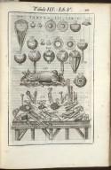 Tabula III. Libri V.