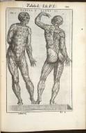 Tabula I. Libri VI.