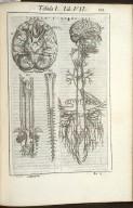 Tabula I. Libri VII.