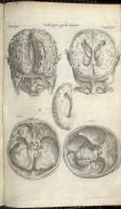 Secunda Pagina Figurarum Capitalium