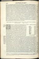 Amplioris Descendentisque Magnae Arteriae.. Caput XIII.