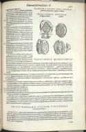 Trigesima Quinti Libri Figura