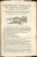 Prima Sexti Libri Figura