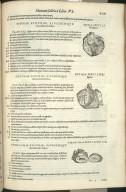 Nona Sexti Libri Figura, Decima Sexti Libri Figura, Undecima Sexti Libri Figura
