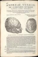 Prima Septimi Libri Figura