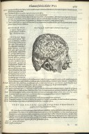 Secunda Septimi Libri Figura