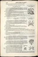 Decimaquinta Septimi Libri Figura, Decimasexta Septimi Libri Figura, Decimaseptima Septimi Libri Figura, Decimaoctava Septimi Libri Figura