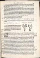 De osse sacro et osse coccyge. Caput XVIII. Fig.IIII-V