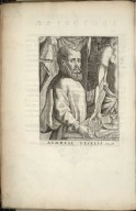 [Portrait of Vesalius]