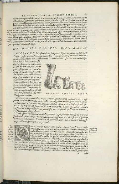 De Manus Digitis. Cap. XXVII. Fig.I-III