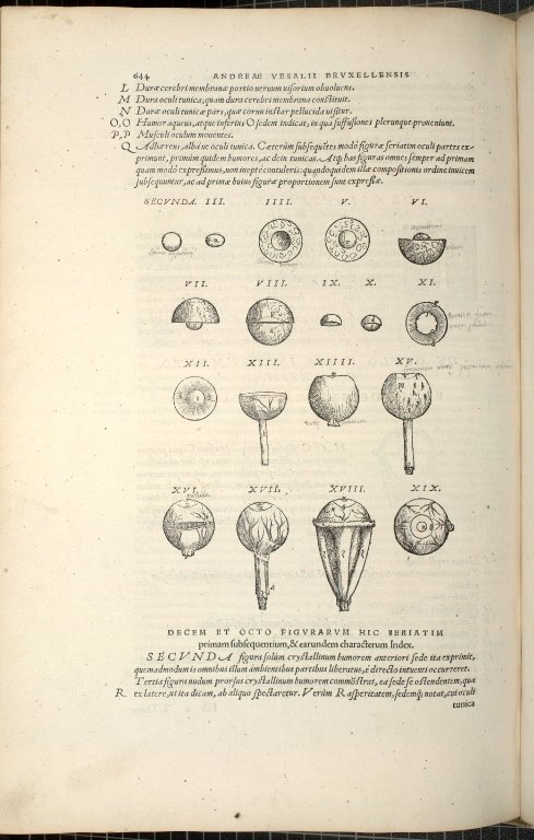 De Oculo Visus Instrumento. Caput XIIII. Fig.II-XIX