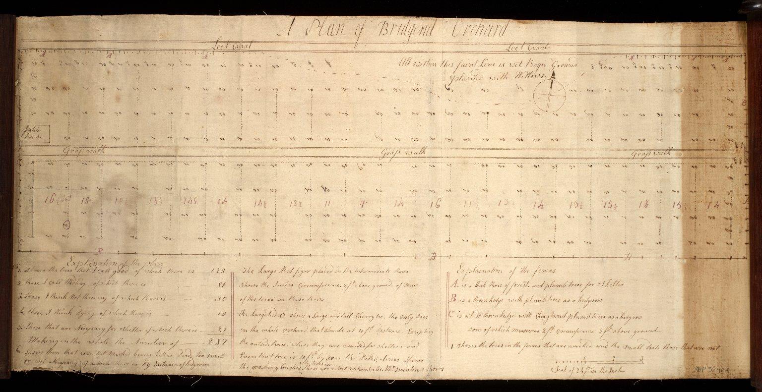 [Plan of Bridgend Orchard] [1 of 1]
