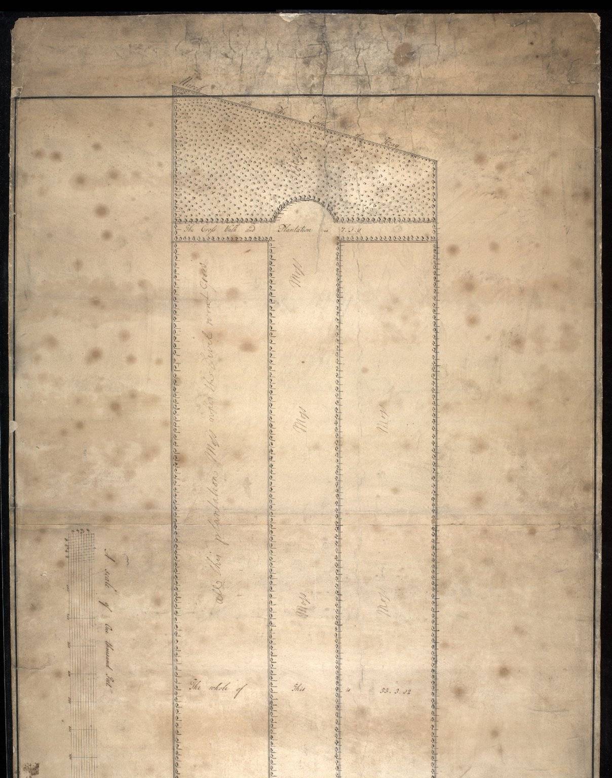 Plan of part of The Graing [i.e. Grange], the seat of the Hon. Major Thomas Cockran Esq. [1 of 2]