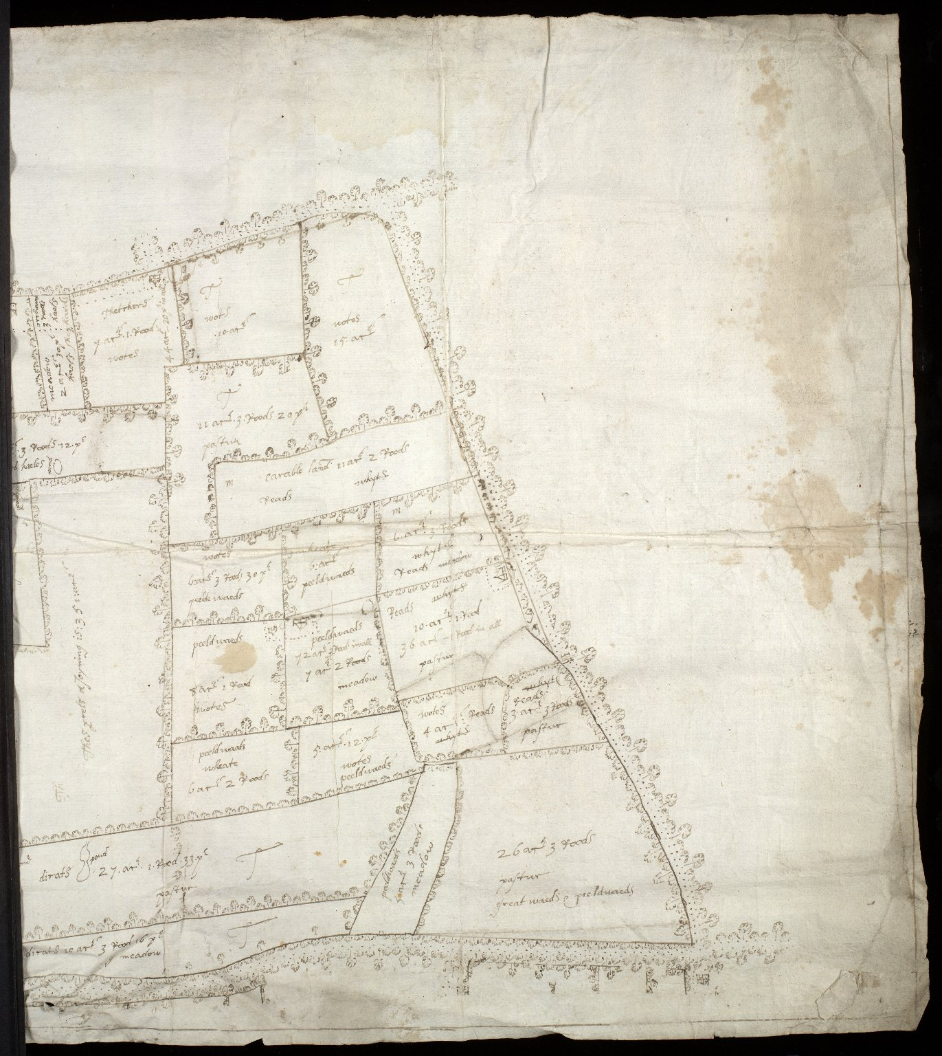 [Plan of the estate of Sir Alex. Cumming of Culter, c. 1702-25] [2 of 2]
