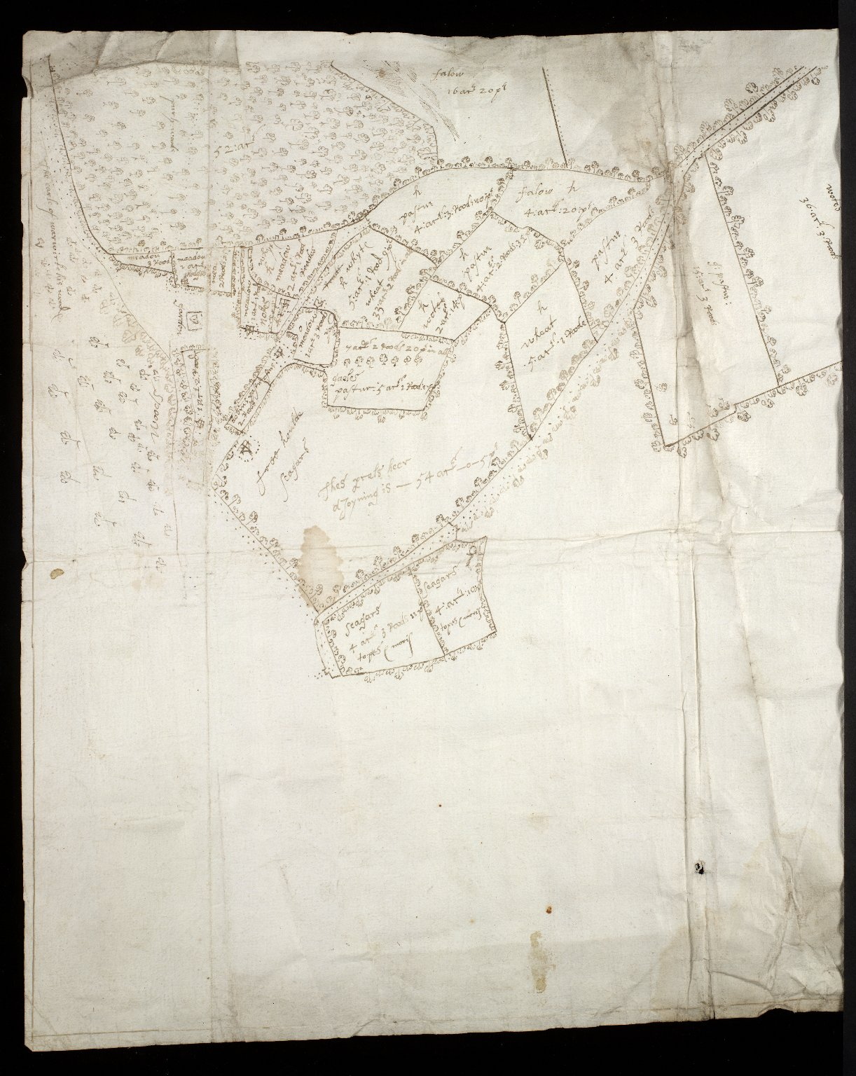 [Map of the estate of Sir Alex. Cumming of Culter] [3 of 6]