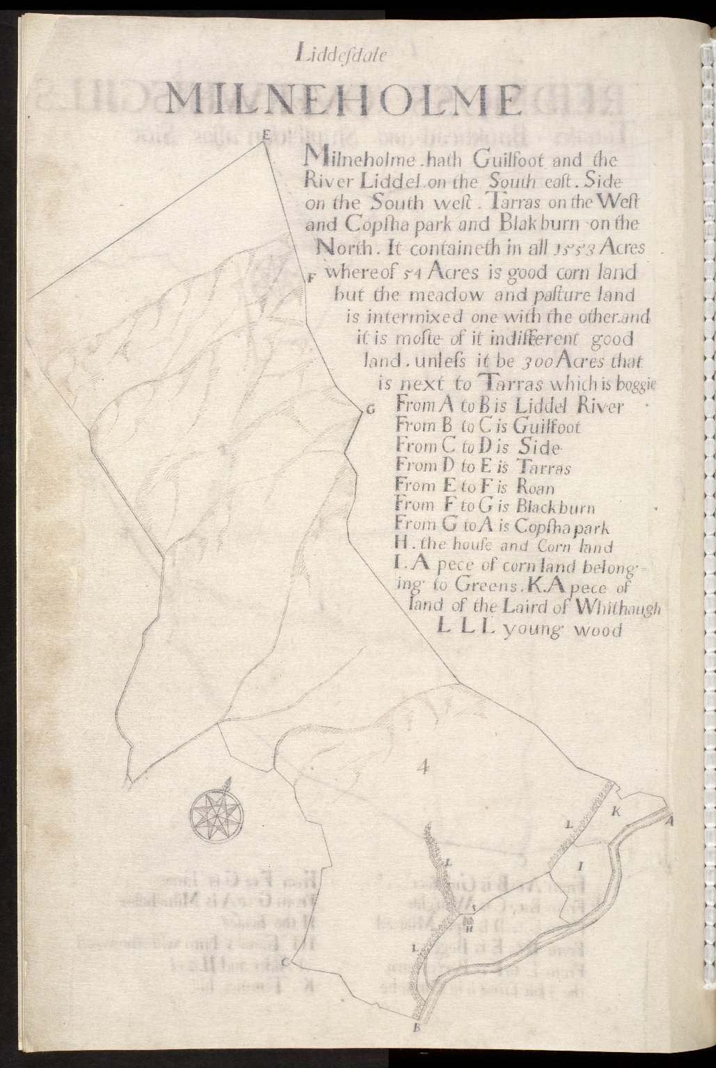 Liddesdale : Milnholme [1 of 1]