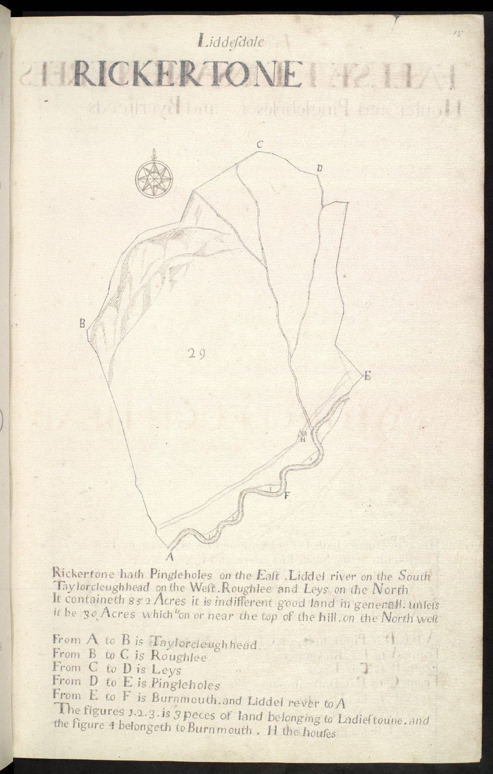 Liddesdale : Rickertone [1 of 1]