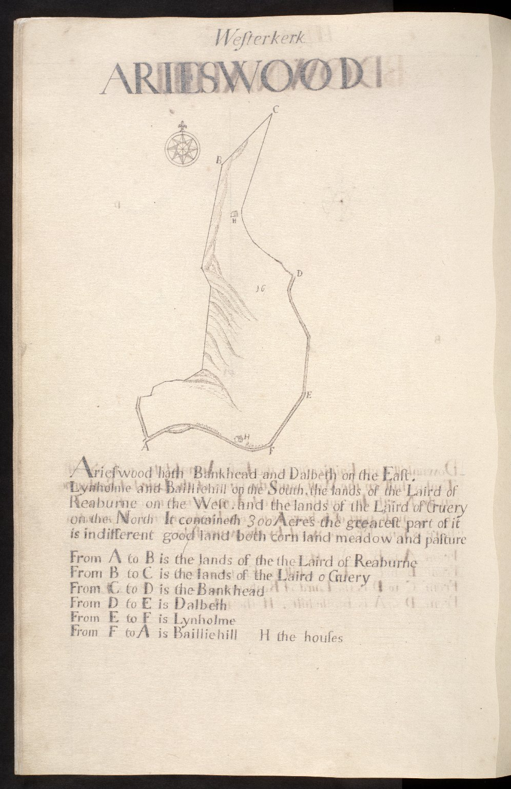 Westerkerk : Arieswood [1 of 1]