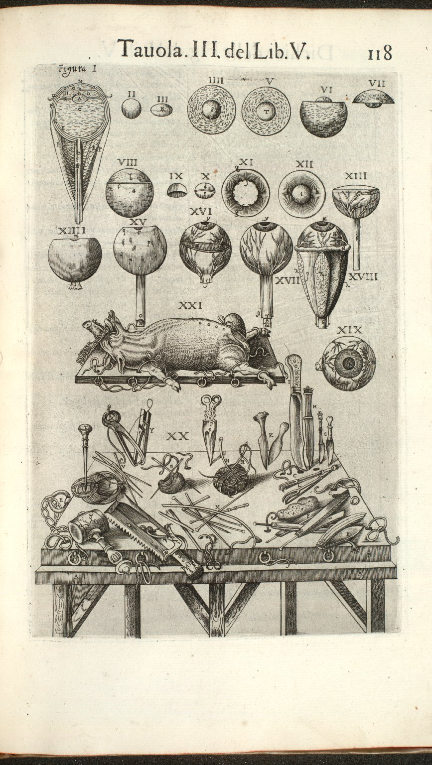 Tavola III del Lib. V