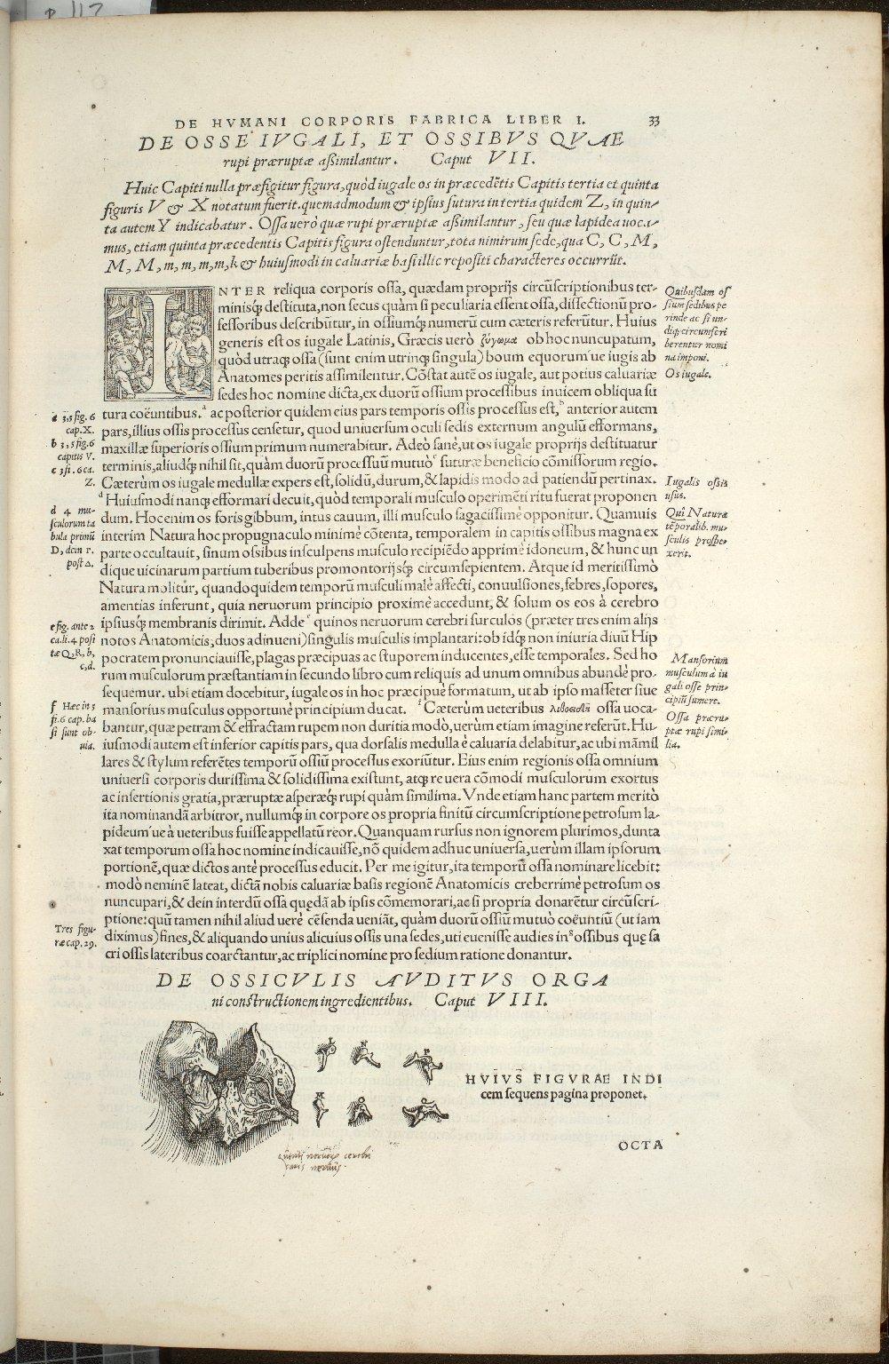 De Ossiculis Auditus Organi constructionem ingredienetibus. Caput VIII.