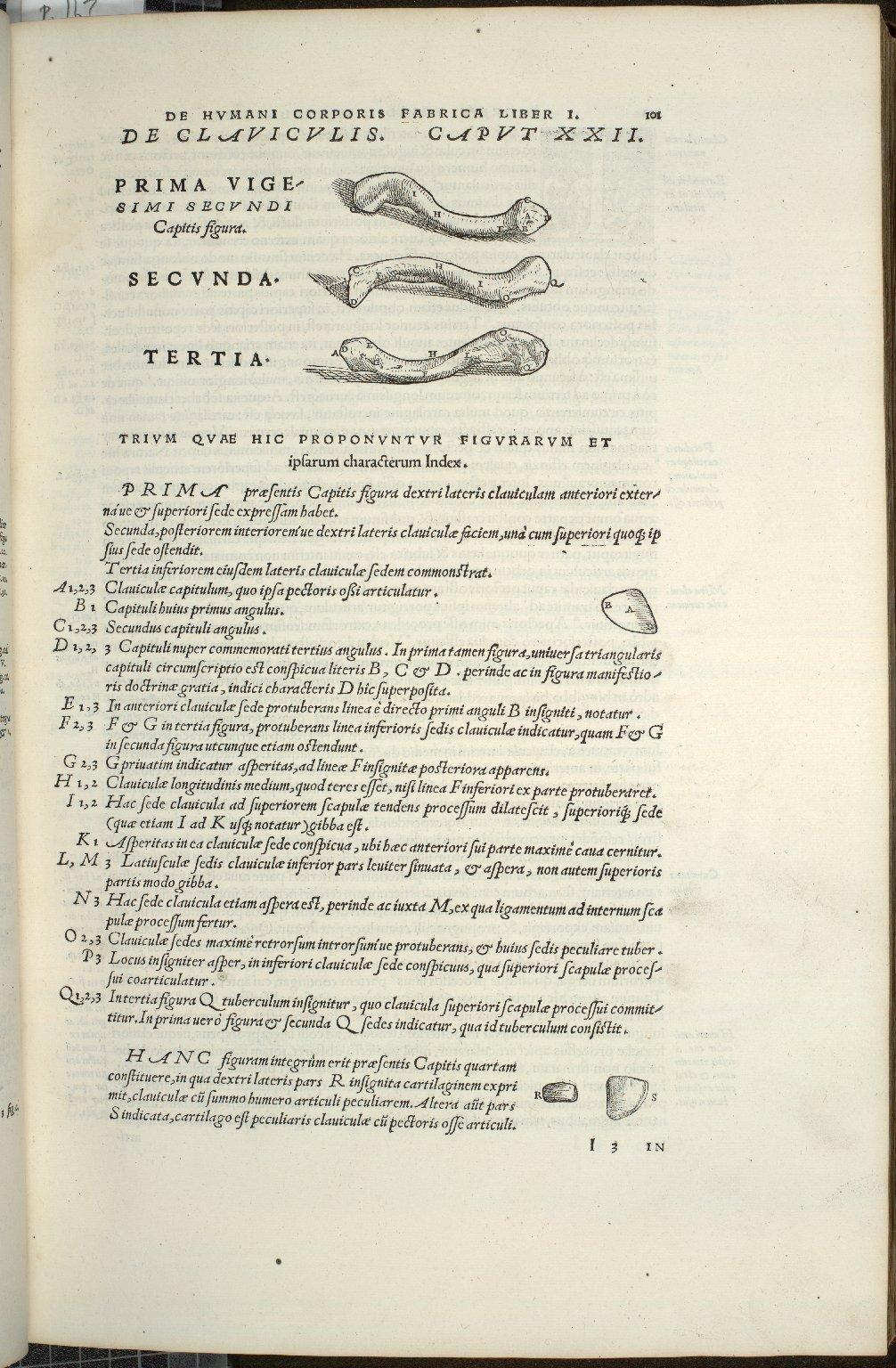 De Claviculis. Caput XXII. Fig.I-III