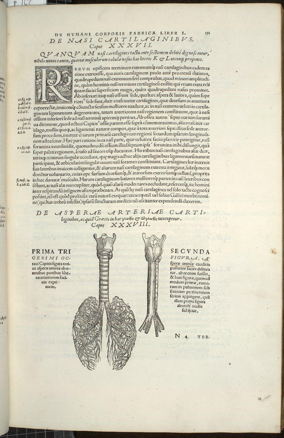 De Asperae Arteriae Carti-laginibus, acquid Graecis in hac.. nuncupetur. Caput XXXVIII. Fig.I-II
