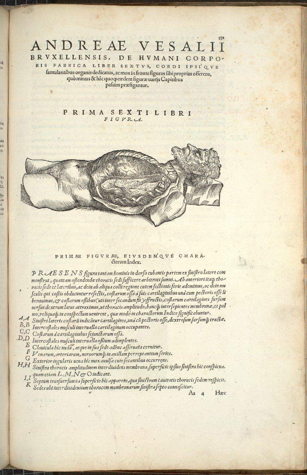 Prima Sexti Libri Figura.