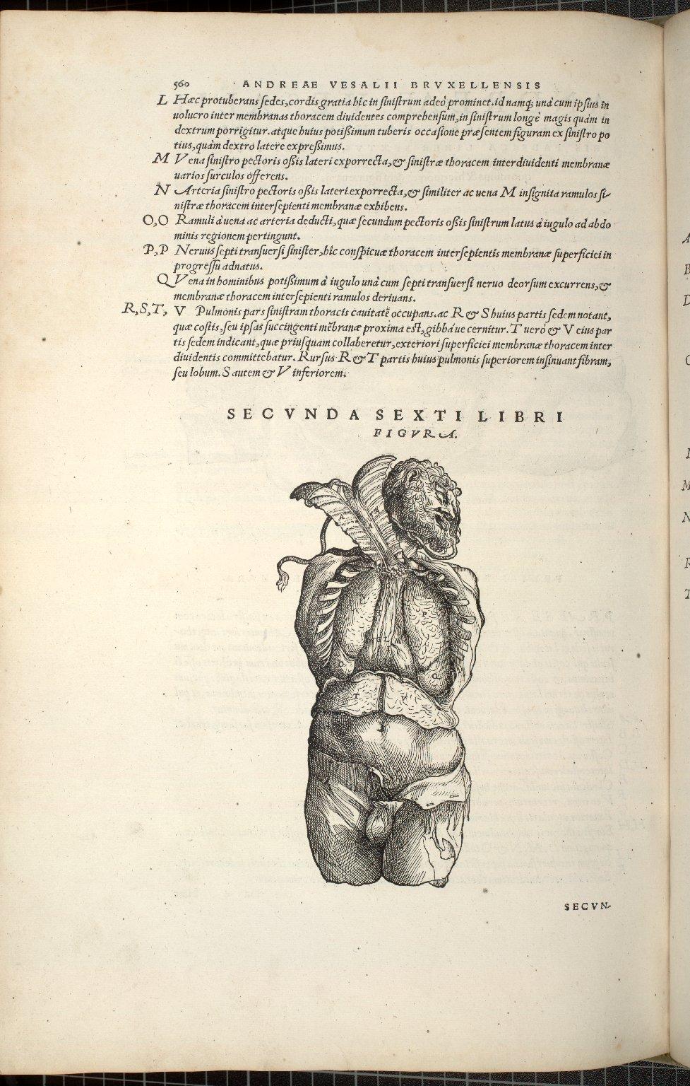 Secunda Sexti Libri Figura.
