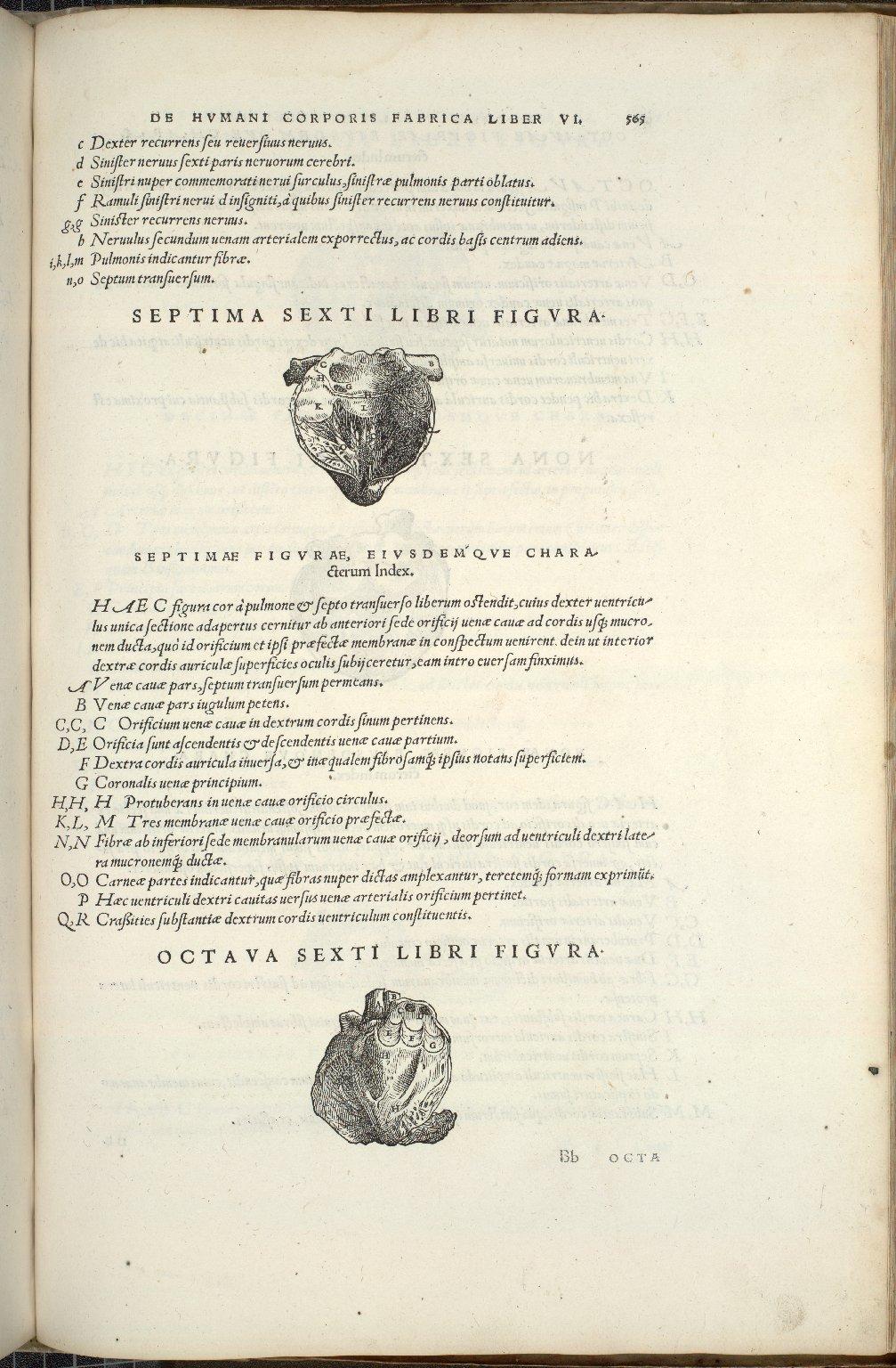Septima Sexti Libri Figura, Octava Sexti Libri Figura.