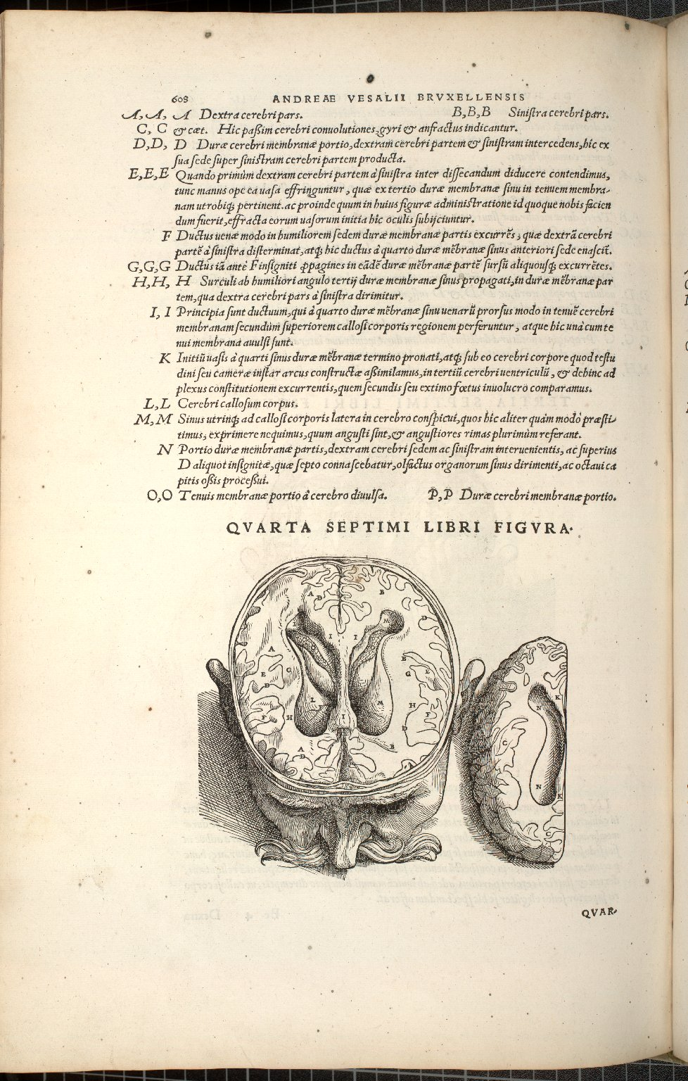 Quarta Septimi Libri Figura