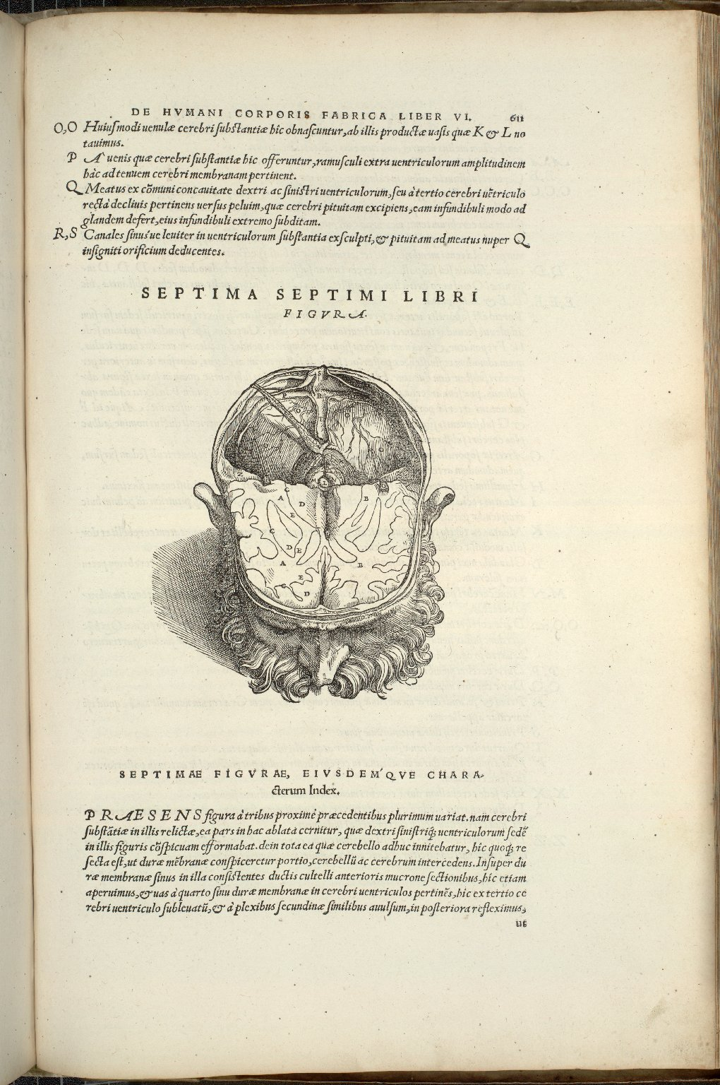 Septima Septimi Libra Figura
