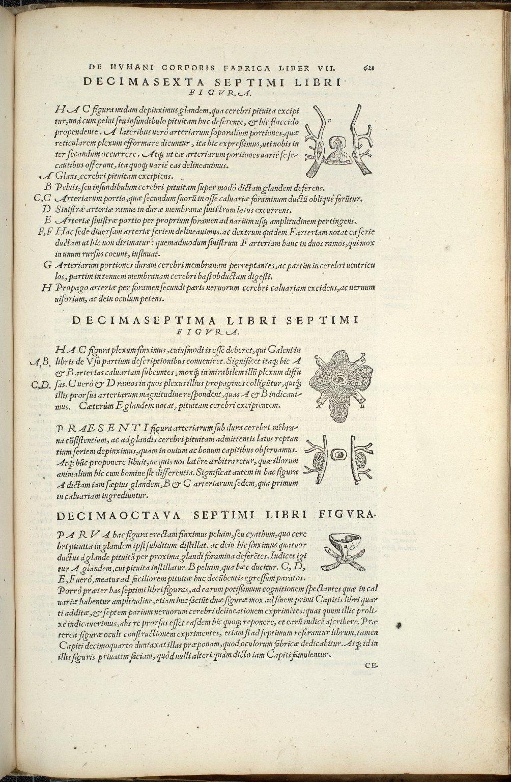 Decimasexta, Decimaseptima, Decimaoctava Septimi Libri Figura
