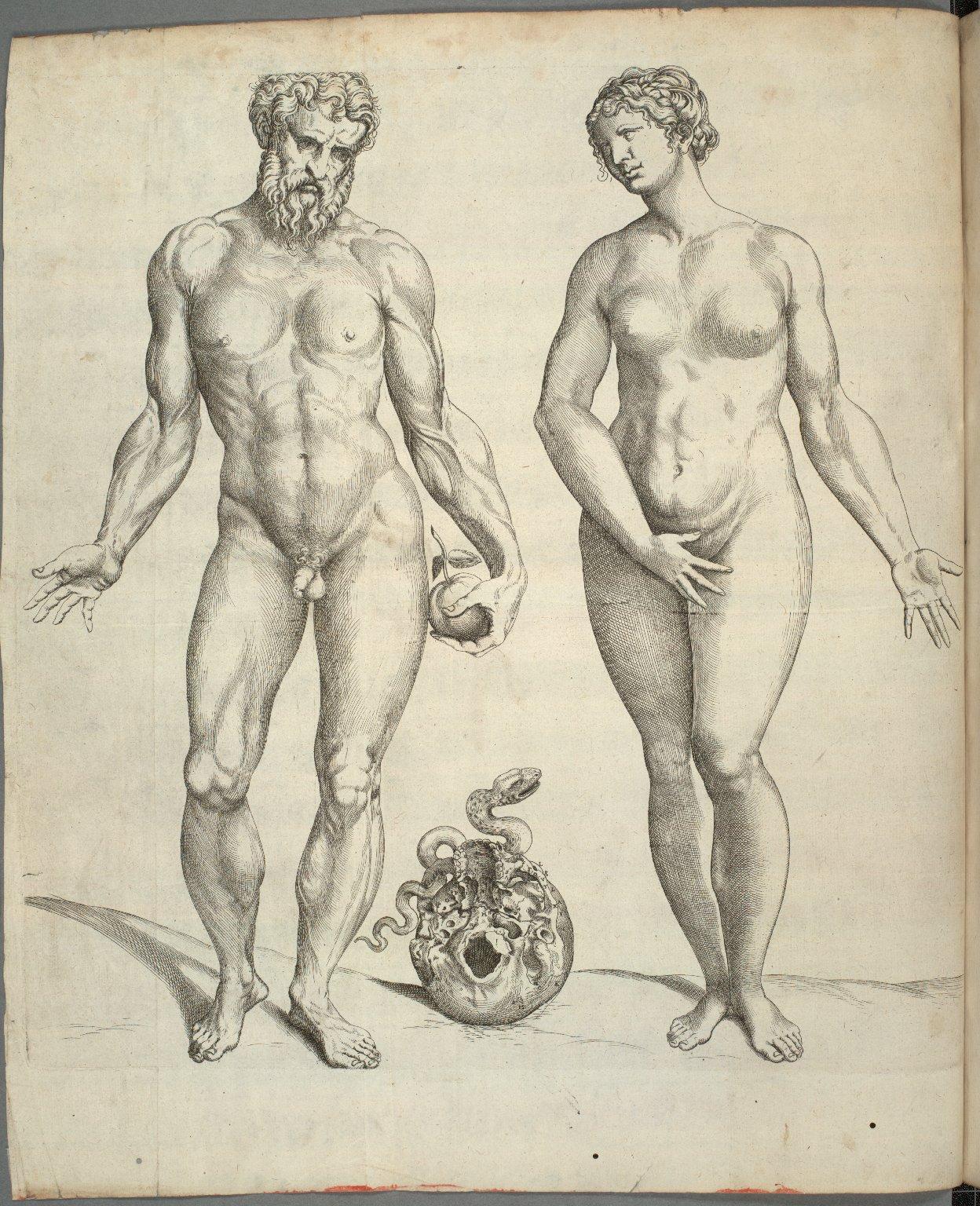 [Adam and Eve]
