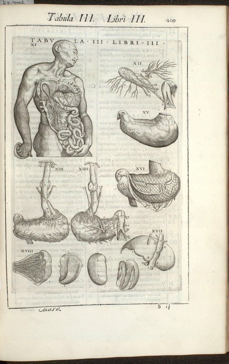 Tabula III. Libri III.