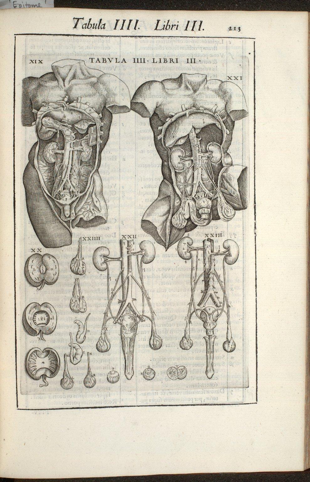 Tabula IIII. Libri III.