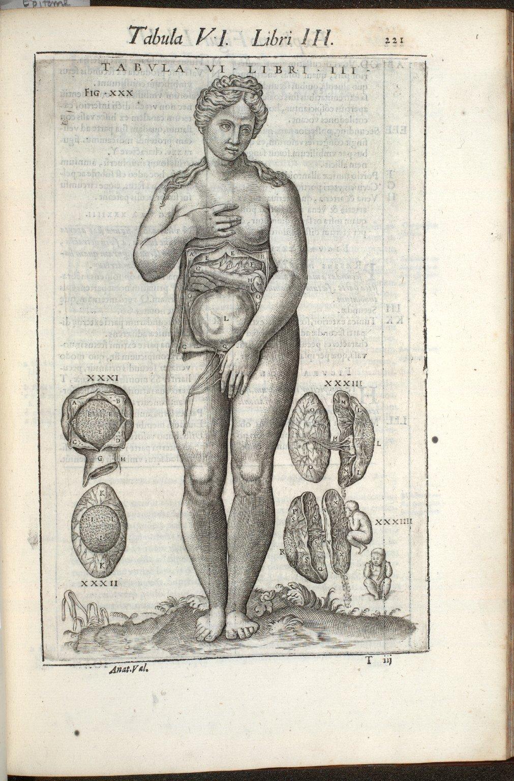 Tabula VI. Libri III.
